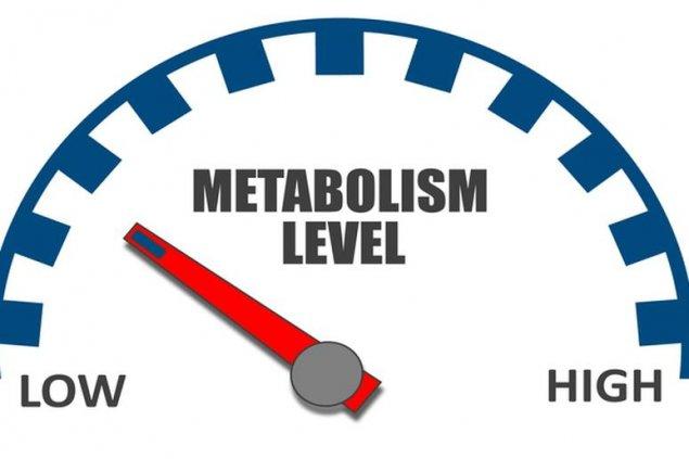 scădere în greutate bsd pot sa pierd in greutate