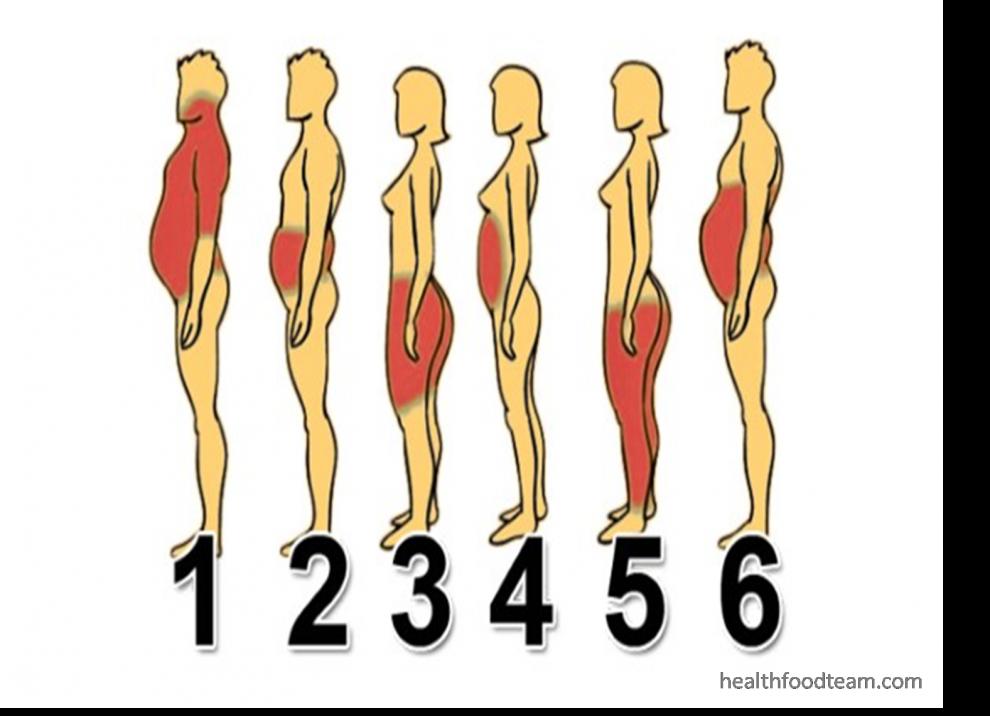 Cum să pierzi grăsimea corporală | alegsatraiesc.ro