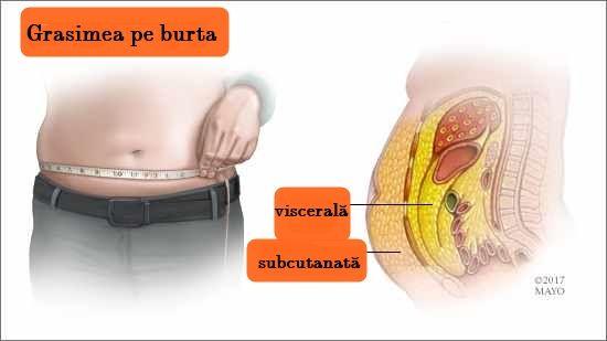 eliminați grăsimea din jurul organelor