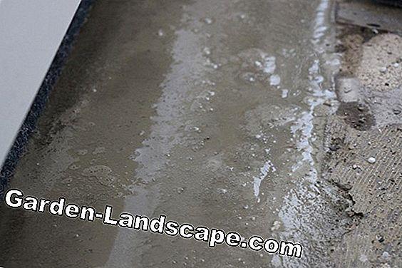 îndepărtați pata de grăsime din beton)