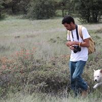 (PDF) Notes on Peotillo | Pedro Nájera - alegsatraiesc.ro