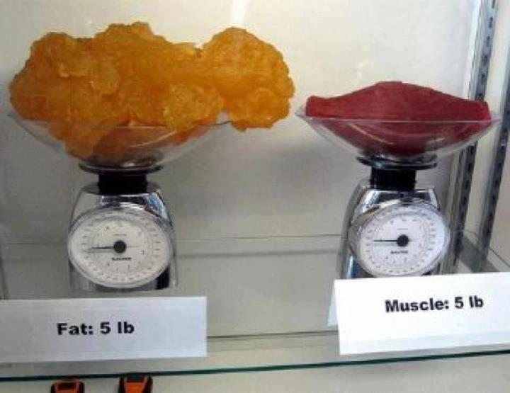 pierderea în greutate consiliere