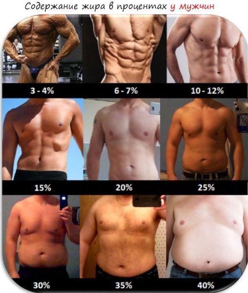 rata normală de a pierde grăsimea corporală)