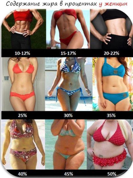 Masa grasă este norma în procente. Care este procentul normal de grăsime corporală pentru sănătate