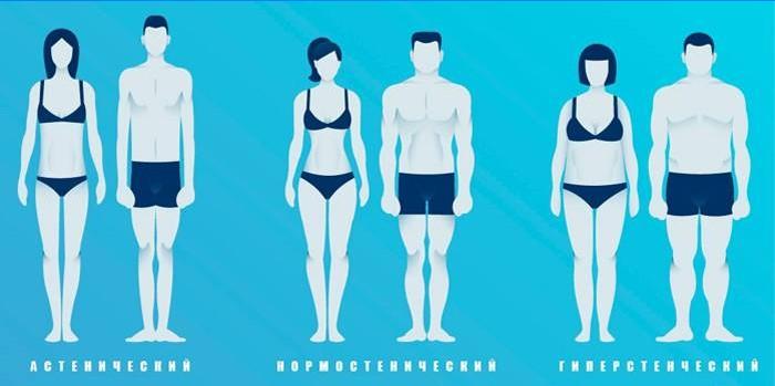 Pierdere în greutate tipul corpului pitta