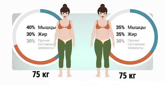 rata normală de a pierde grăsimea corporală