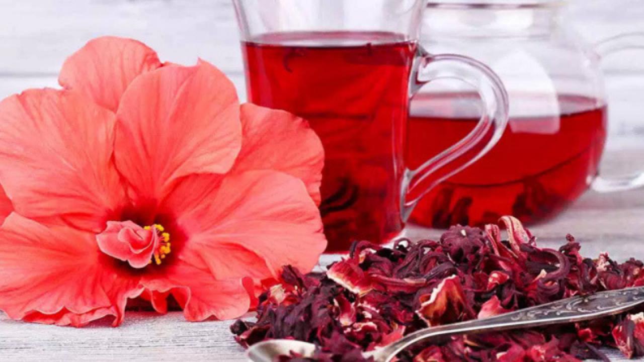 Ceai hibiscus gbskus pentru pierderea în greutate