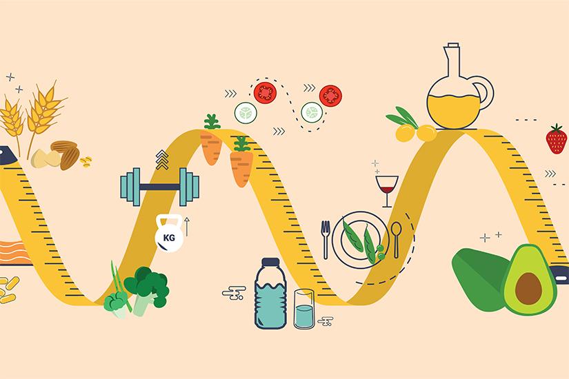 metabolismul pierderii în greutate
