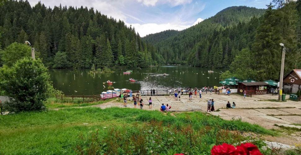 slabire padure lac)