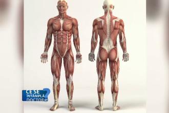 melatonina ajută la pierderea în greutate