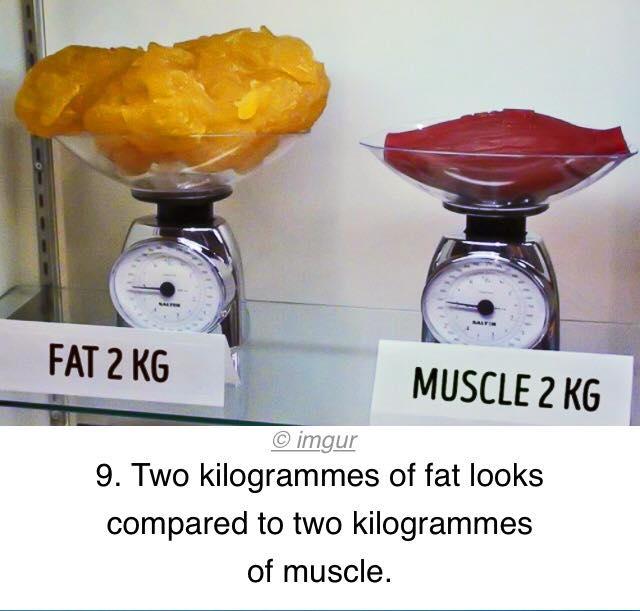diavolii gheară pierderea în greutate Pierdere în greutate de 69 kg