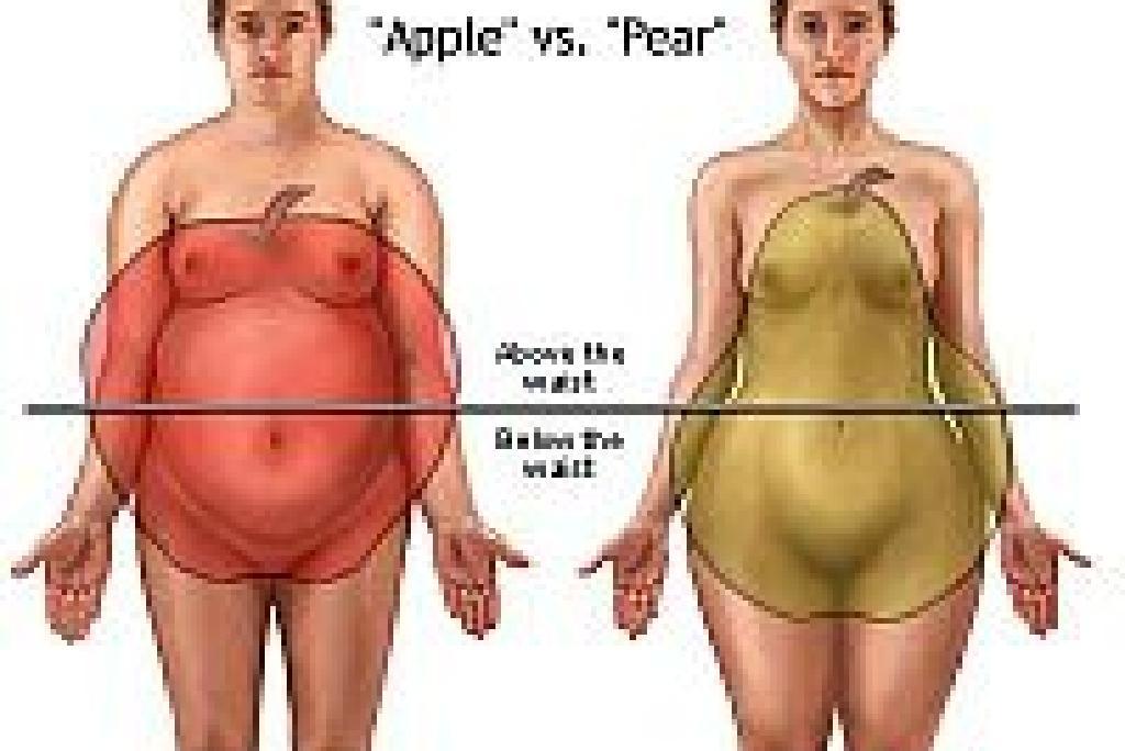 Procentul de grăsime corporală - Body fat percentage - alegsatraiesc.ro