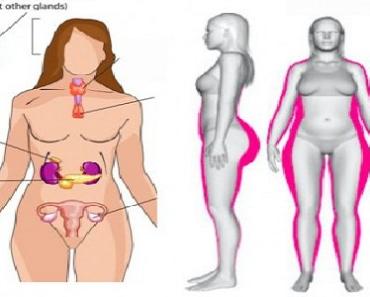 Singurele 4 metode reale pentru a scapa de grasime | Cristian Margarit