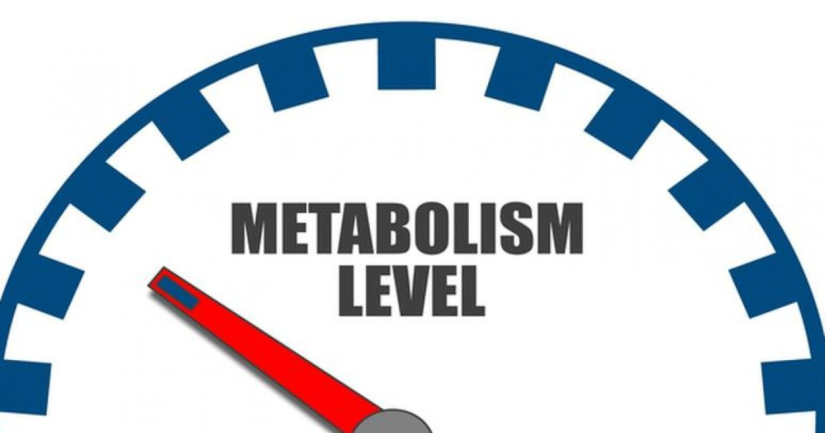 Cum de a accelera metabolismul pentru pierderea in greutate: 4 moduri