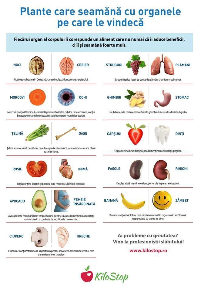 8 Dieta Rina ideas in | planuri dietă, diete, copt sănătos