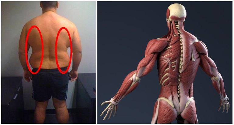 cum să-ți pierzi spatele gras