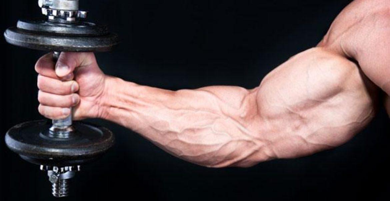 cum să pierzi grăsimea corporală a sănătății bărbaților cum să arzi grăsimea corpului uman