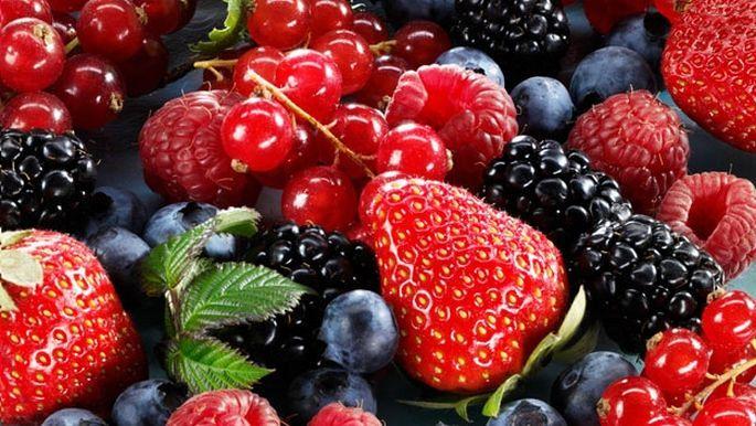 fructele de pădure ard grăsime)