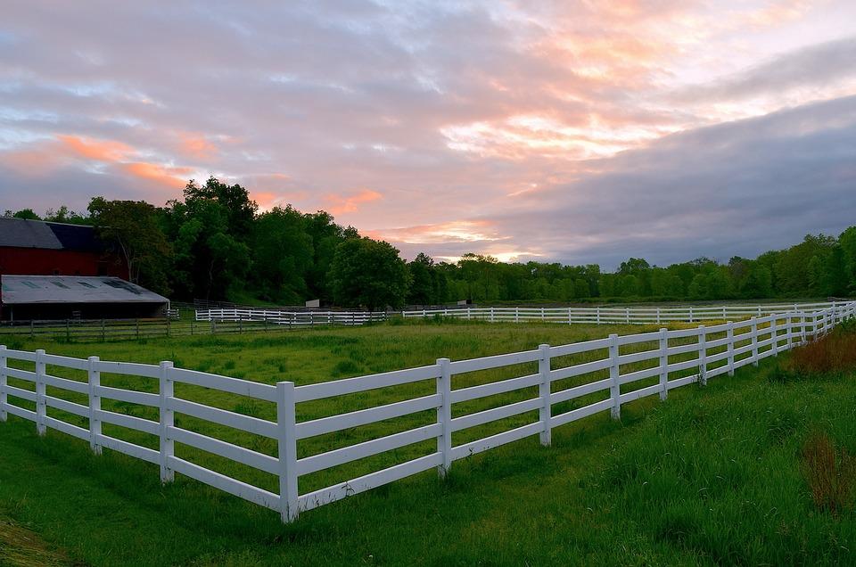 Reparați un gard într-un vis. De ce visează gardul