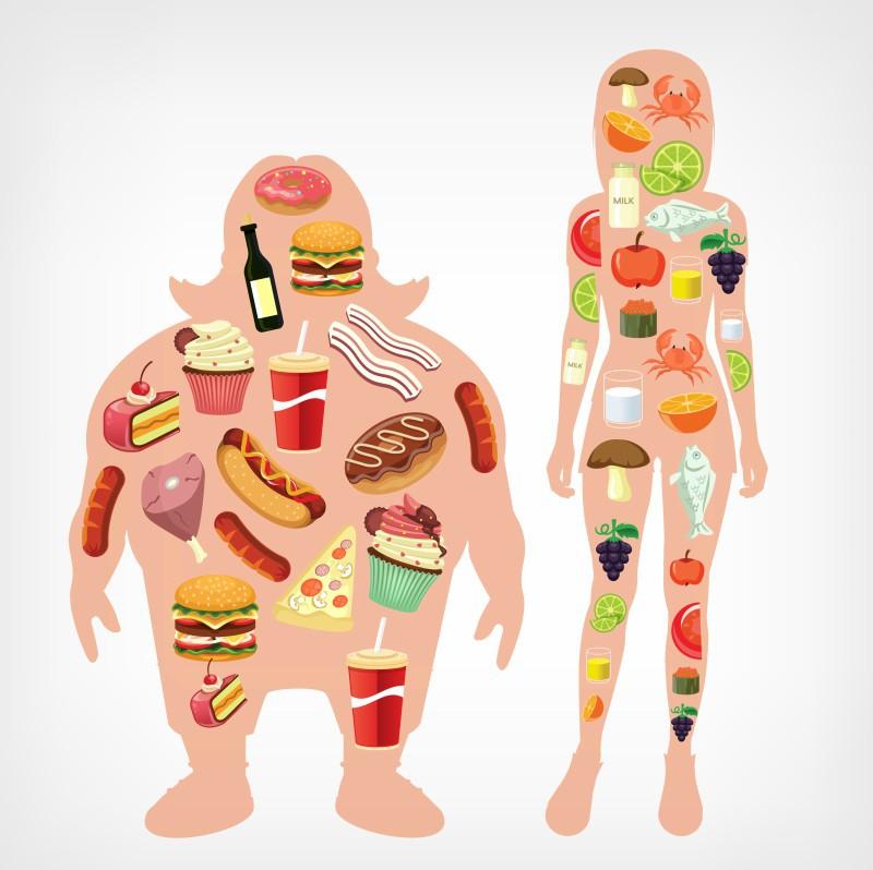 modificarea formei corpului fără pierderi în greutate cea mai mare pierdere în greutate în 2 săptămâni
