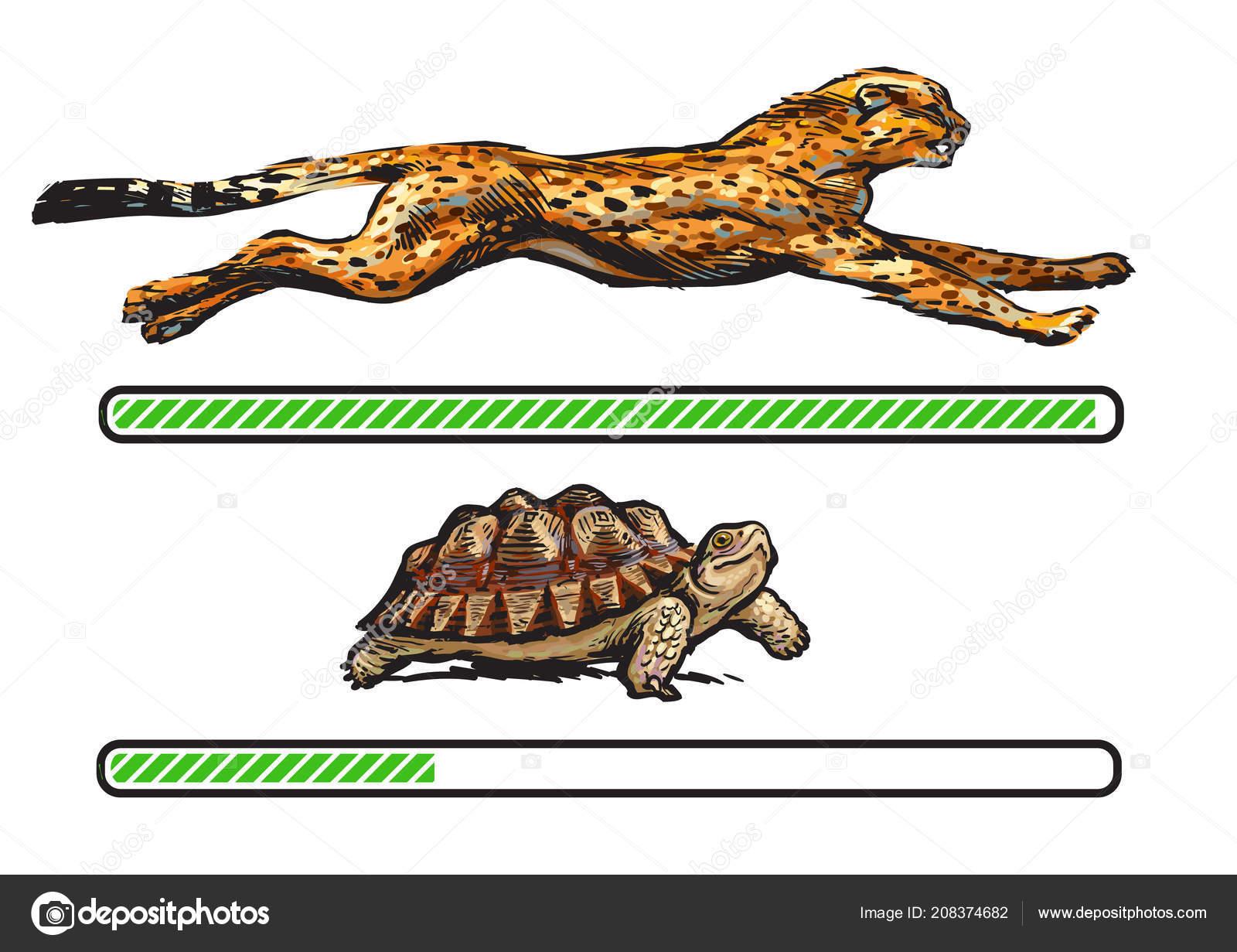 ajuta leopard gecko sa slabeasca