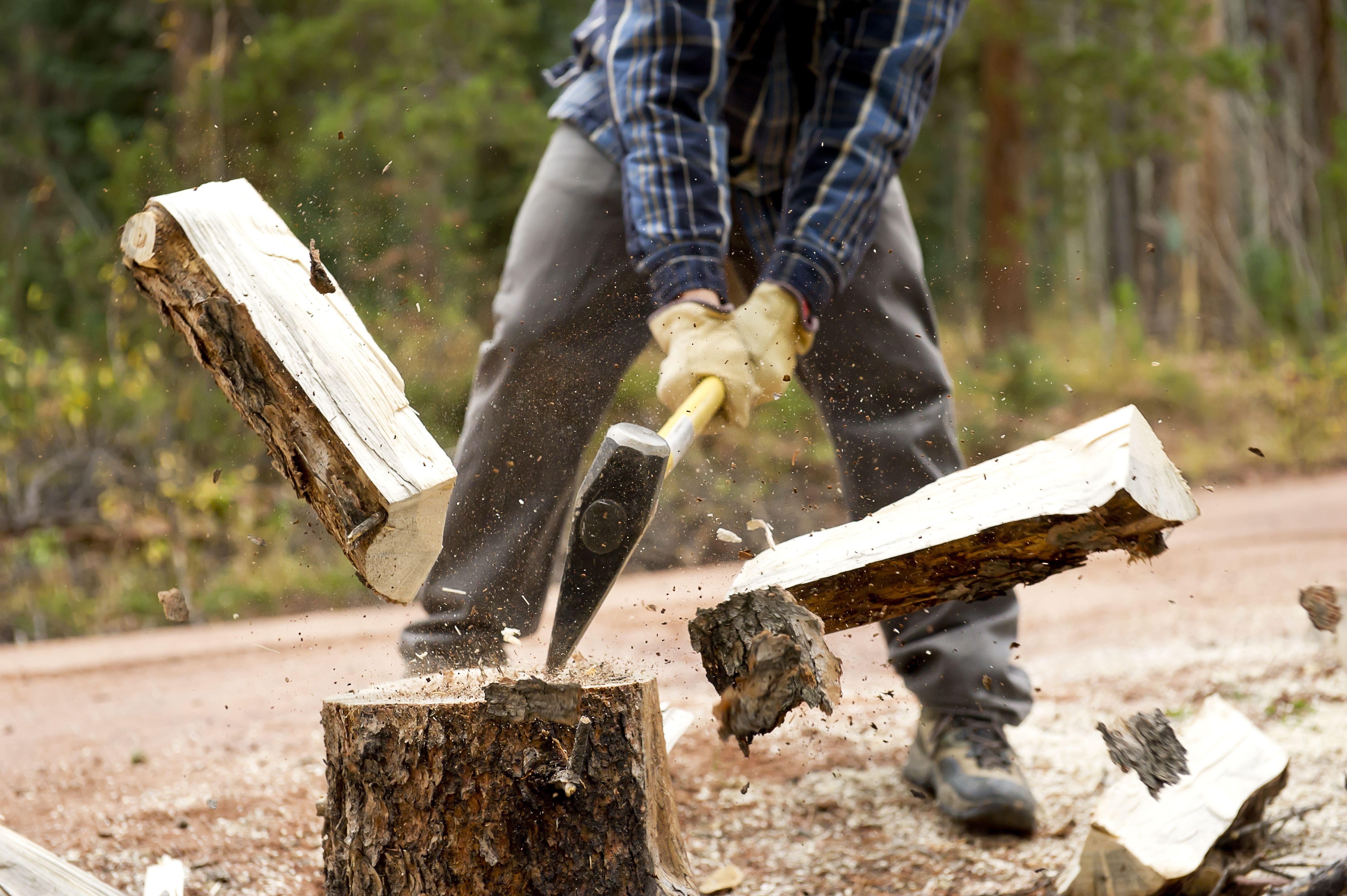 cel mai bun lemn pentru a arde grăsime)