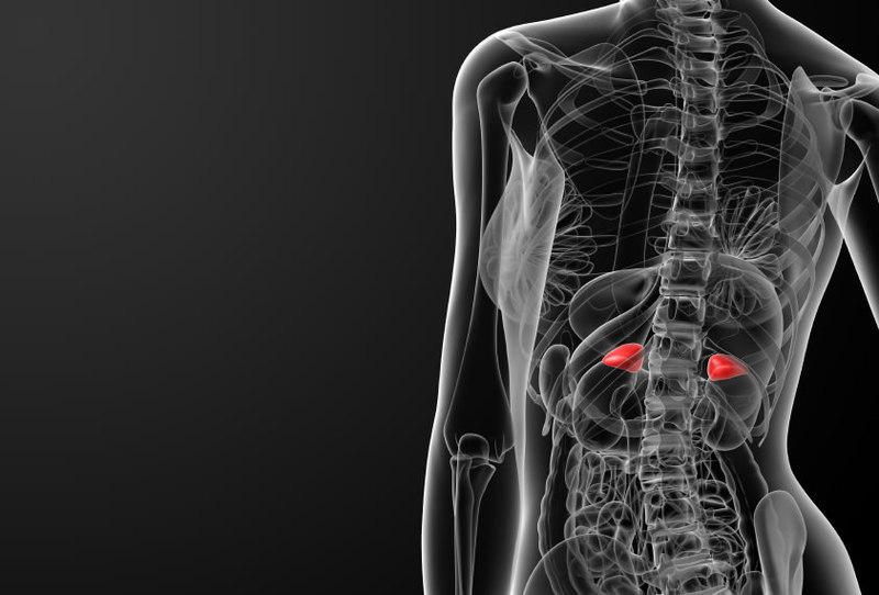 adaptogeni pentru pierderea de grăsime