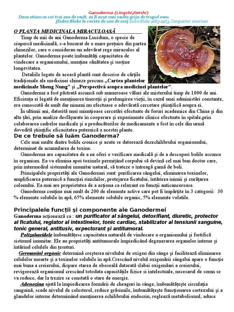 pierderea de grăsime a ciupercilor reishi)