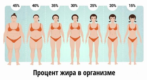 cum să calculați pierderea de grăsime corporală)
