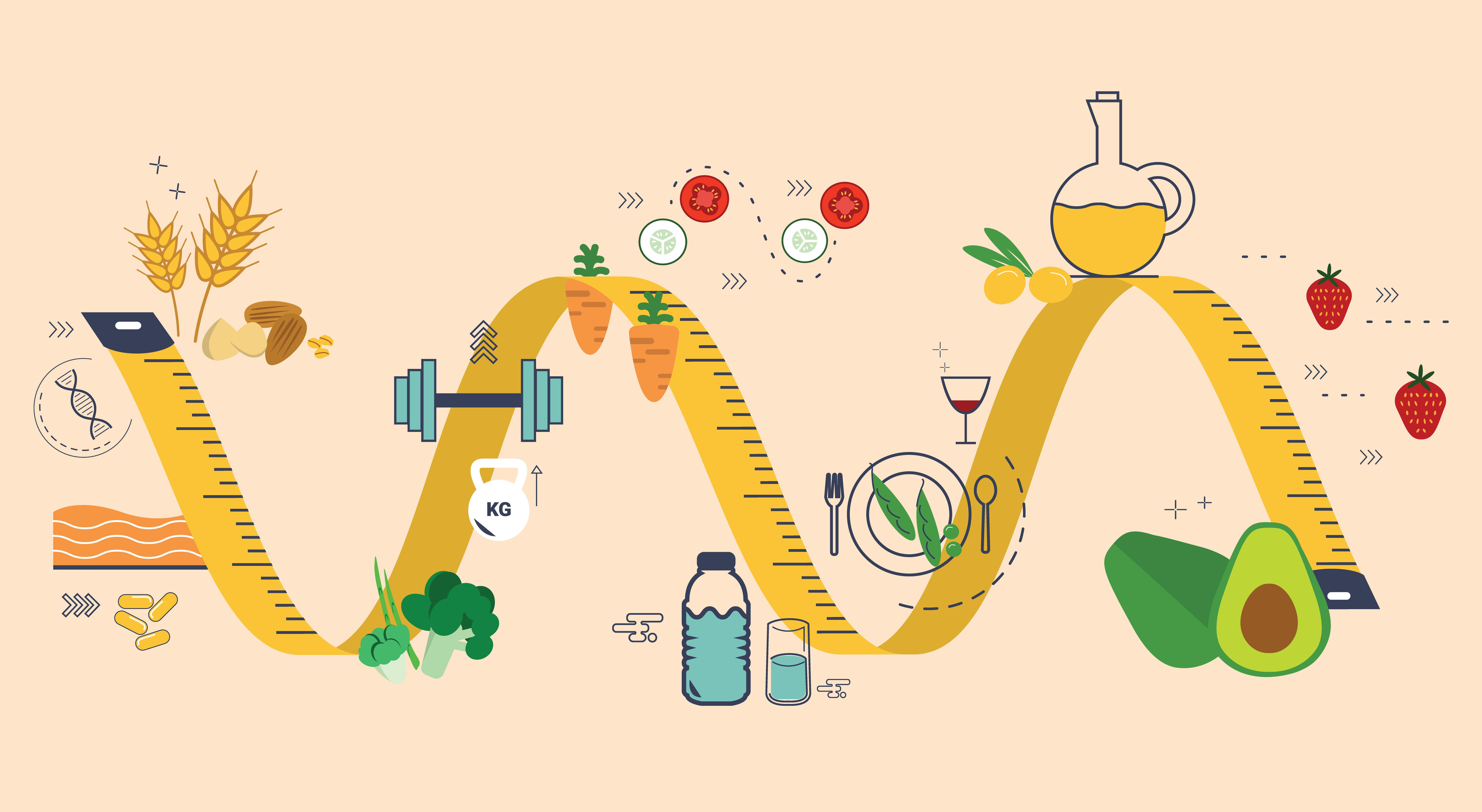 Metabolism, ce este un limbaj simplu și cum să-l îmbunătățești - Analize