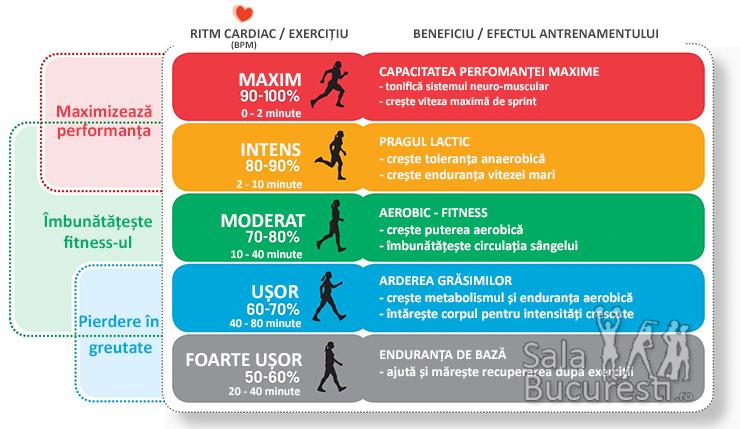 Totul despre Carnitina: efecte secundare, ajuta la slabit? Totul despre Carnitina