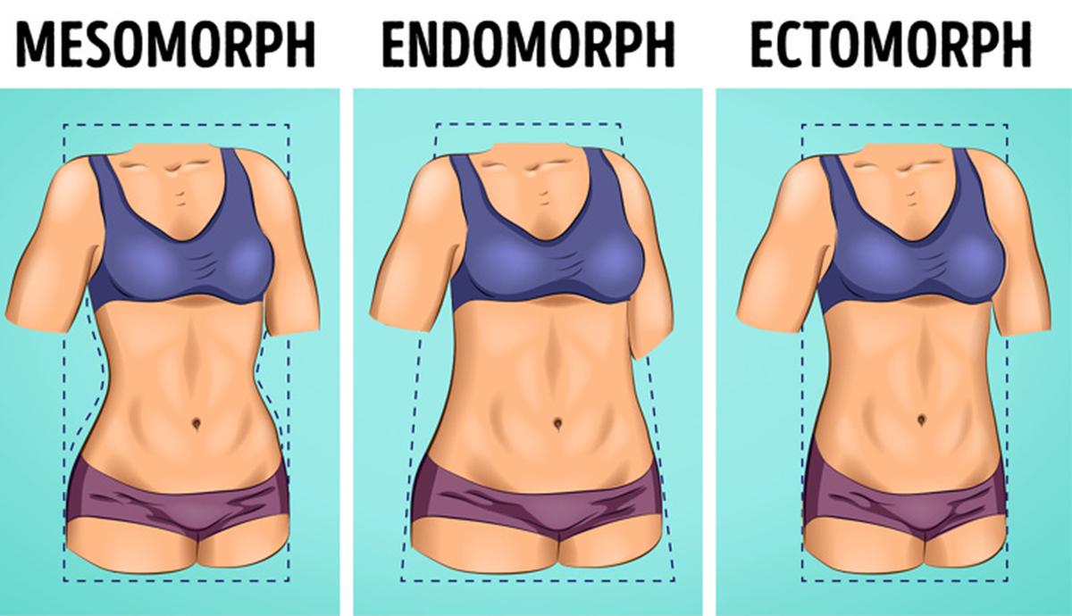 ectomorful pierde în greutate cu ușurință