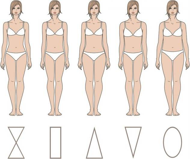 corpul clar subțire)