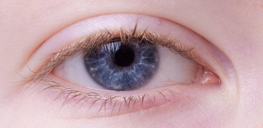 pierderea în greutate sub cercurile oculare)