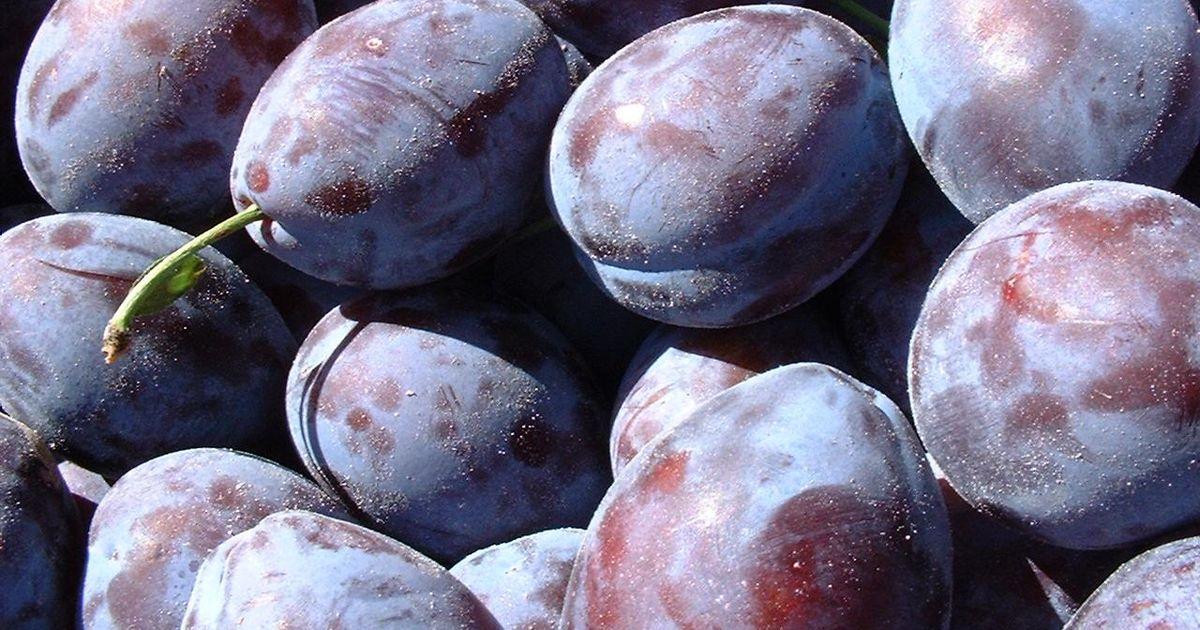 slăbire efecte de prune)