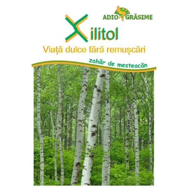 Extract din Sevă de Mesteacăn Betula linfa, PlantExtrakt, 50 ml